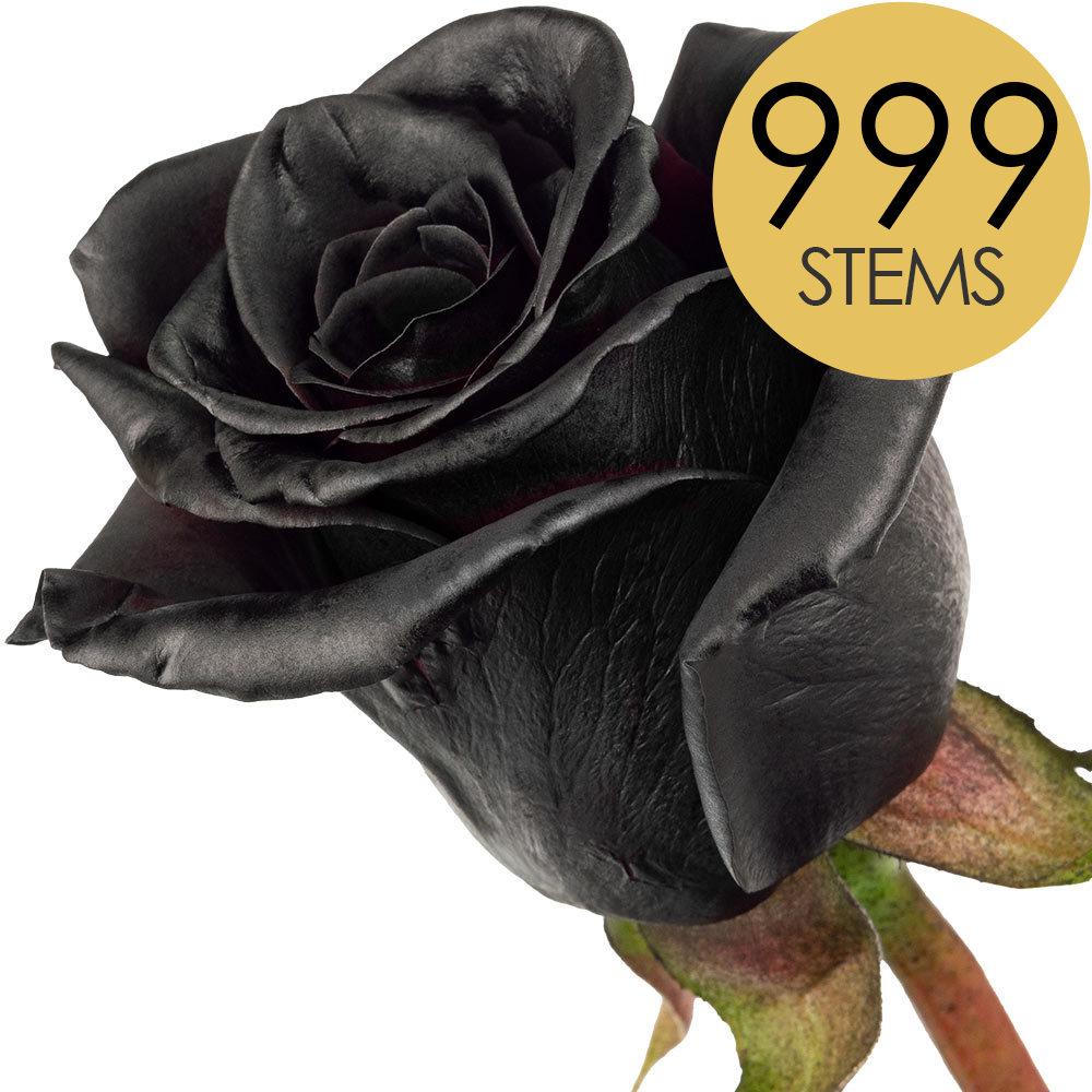 Flowers 999 BLACK Bulk Roses