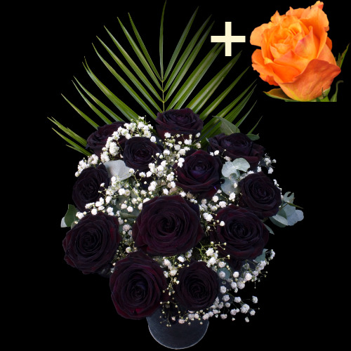 A single Orange Rose surrounded by 11 Black Roses