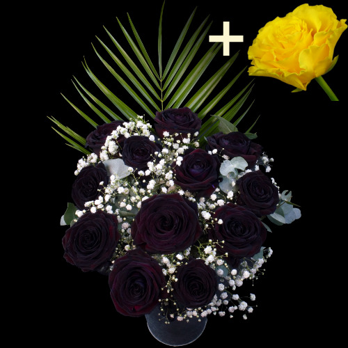 A single Yellow Rose surrounded by 11 Black Roses