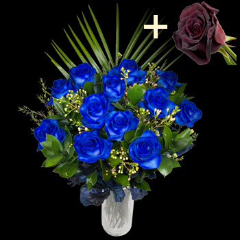 11 Blue Roses and a Black Baccara Rose