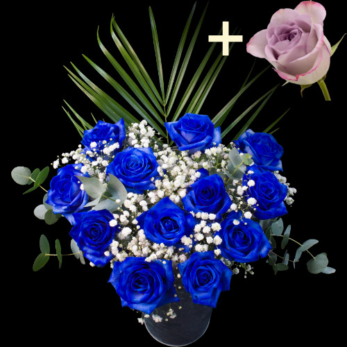 Send 1 jug of fresh blue rose petals buy 1 jug of fresh for Buy black and blue roses