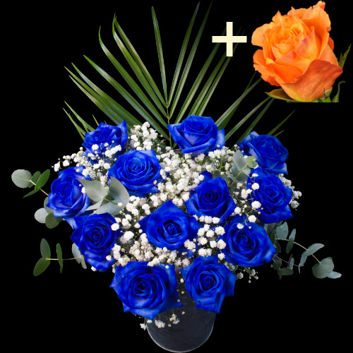 A single Orange Rose surrounded by 11 Blue Roses