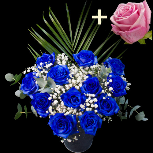 11 Blue Roses and a Pink Rose