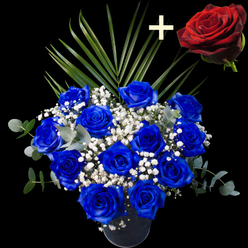 A single Red Rose surrounded by 11 Blue Roses