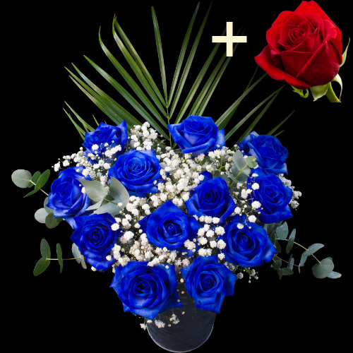 11 BLUE and 1 RED Luxury Rose Bouquet