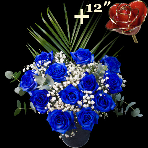 A single 12Inch Gold Trimmed Red Rose surrounded by 11 Blue Roses