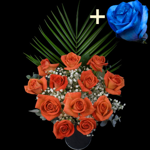 A single Blue (Dyed) Rose surrounded by 11 Orange Roses