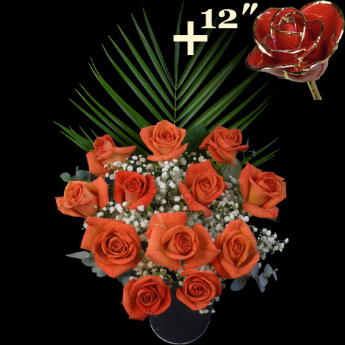 A single 12Inch Gold Trimmed Red Rose surrounded by 11 Orange Roses