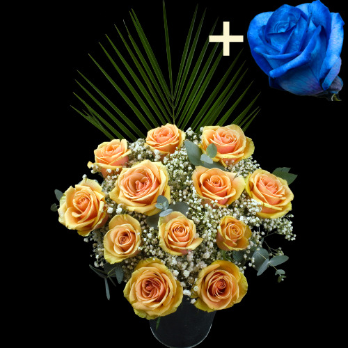11 PEACH and 1 BLUE Luxury Rose Bouquet