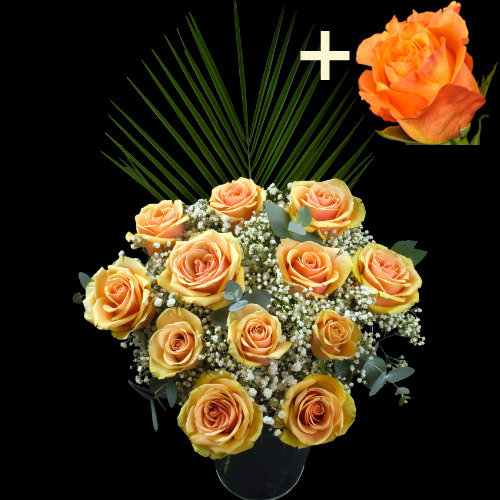 A single Orange Rose surrounded by 11 Peach Roses