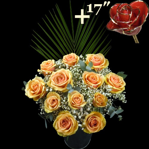 11 Peach Roses and a 17Inch Gold Trimmed Red Rose
