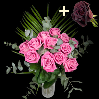 11 Pink Roses and a Black Baccara Rose