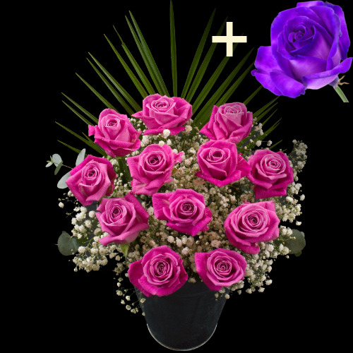 A single Purple Rose surrounded by 11 Pink Roses