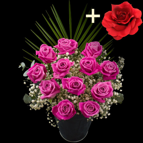 A single Red Silk Rose surrounded by 11 Pink Roses