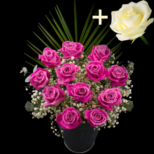A single White Rose surrounded by 11 Pink Roses
