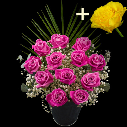 A single Yellow Rose surrounded by 11 Pink Roses