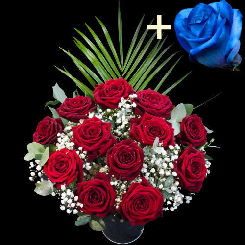 A single Blue Rose surrounded by 11 Deep Red Naomi Roses