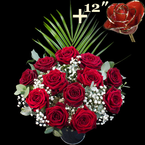 11 Grand Prix Roses and a 12Inch Gold Trimmed Red Rose
