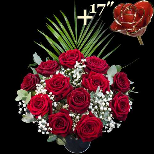 11 Grand Prix Roses and a 17Inch Gold Trimmed Red Rose