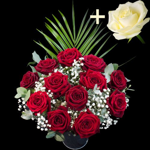 11 Grand Prix Roses and a White Rose