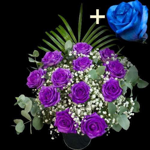 A single Blue Rose surrounded by 11 Purple Roses