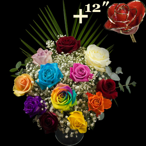 12 red roses buy 12 red roses premium lengths free for Where can i buy rainbow roses in the uk