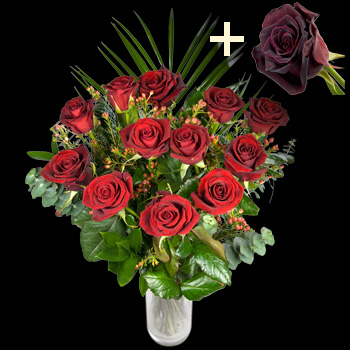 11 Red Roses and single Black Baccara Rose