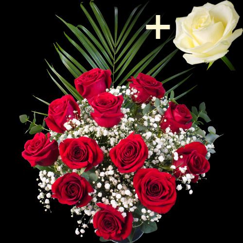 11 Red Roses and single White Rose