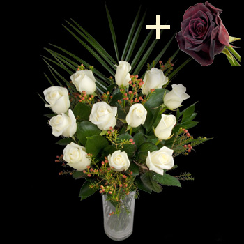 11 White Roses and a Black Baccara Rose