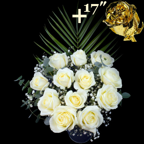 A single 17Inch Gold Dipped Rose surrounded by 11 White Roses
