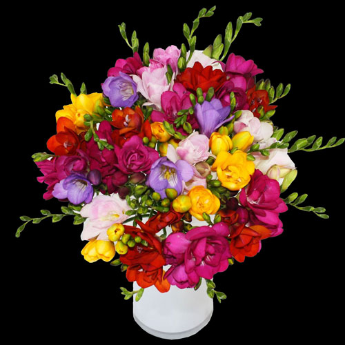 Freesia Fusion Bouquet
