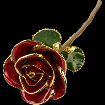 A Red 17Inch 24kt Gold Trimmed Rose