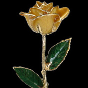 A Yellow 17Inch 24kt Gold Trimmed Rose
