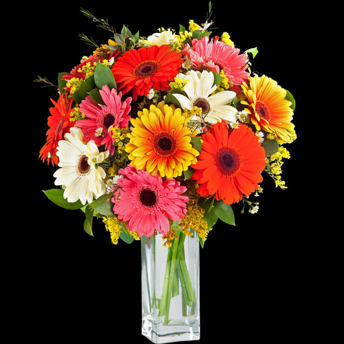 Gorgeous Gerberas Bouquet