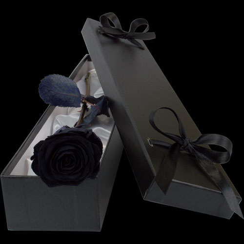 Luxury Black (Dyed) Rose