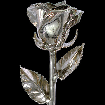 A 12Inch Platinum Dipped Rose