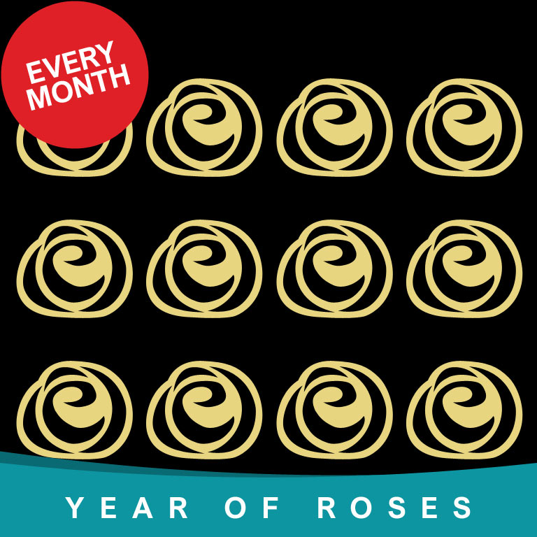 Year of Single Roses every month