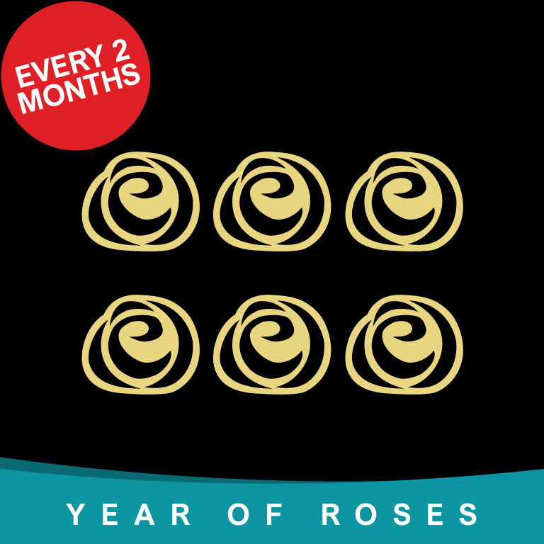 Year of Single Roses every 2 months