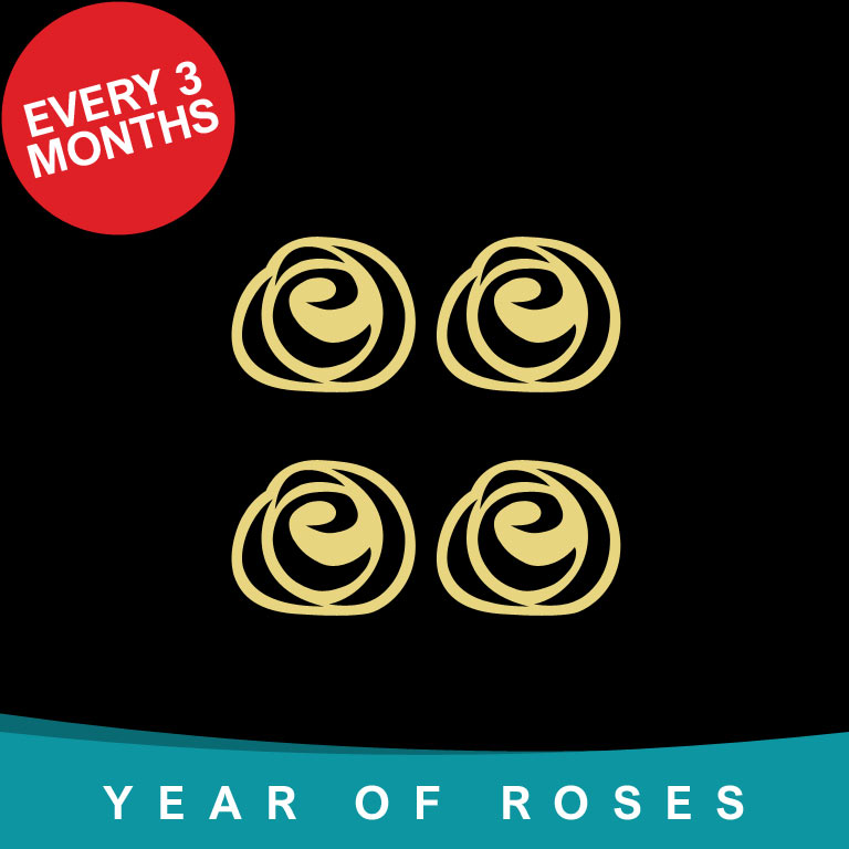 Year of Single Roses every 3 months
