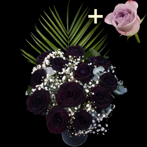 A single Lilac Rose surrounded by 11 Black Roses
