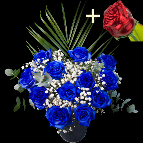A single CHOCOLATE Rose surrounded by 11 Blue Roses