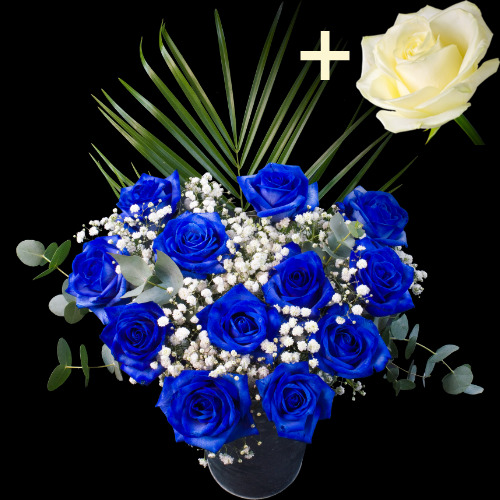 A single White Rose surrounded by 11 Blue Roses