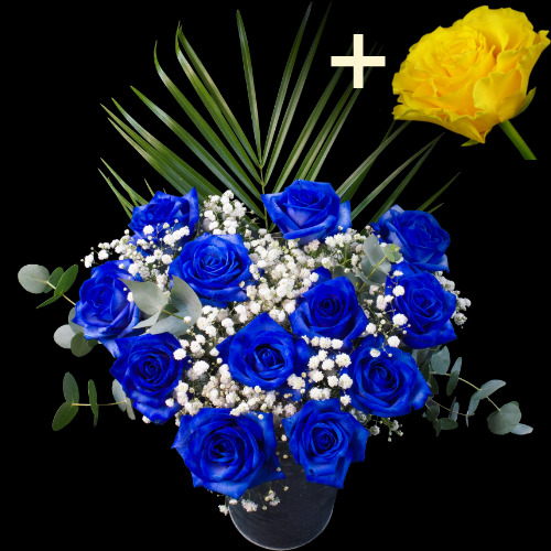 A single Yellow Rose surrounded by 11 Blue Roses