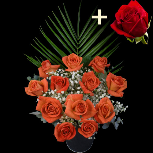 A single Bright Red Freedom Rose surrounded by 11 Orange Roses