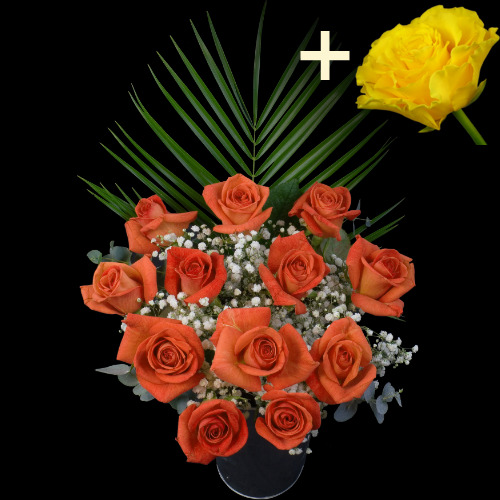 A single Yellow Rose surrounded by 11 Orange Roses