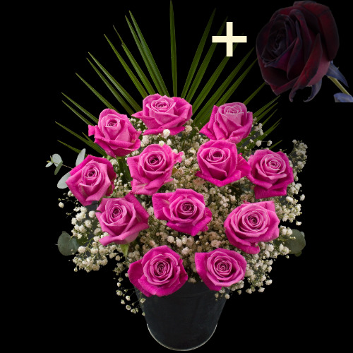 A single Black Rose surrounded by 11 Pink Roses