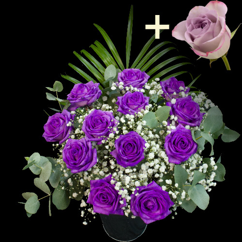 A single Lilac Rose surrounded by 11 Purple Roses