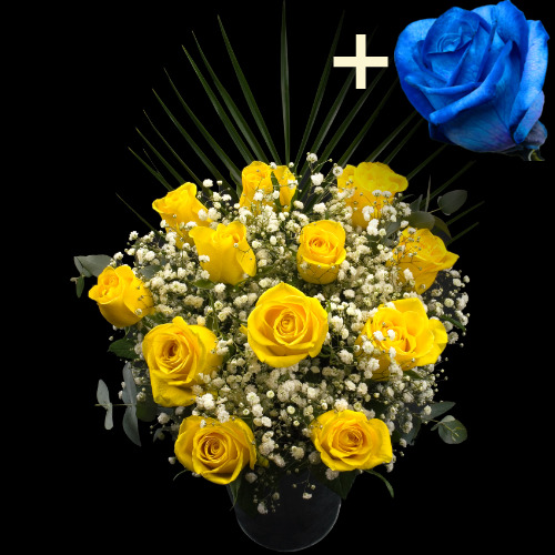Buy 11 yellow roses single blue rose online with free for Buy black and blue roses