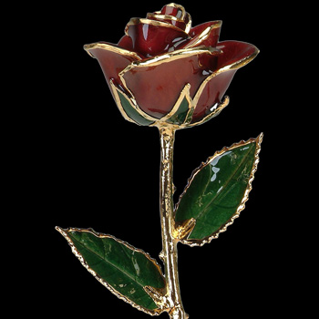 A Burgundy 12Inch 24kt Gold Trimmed Rose