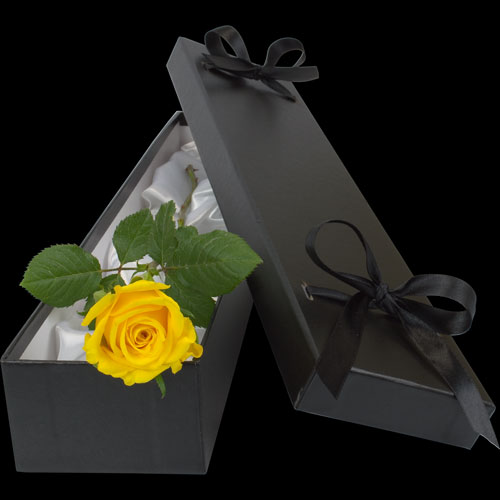 Luxury Single Yellow Rose